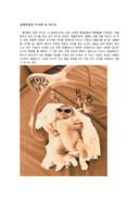 신통방통한 아기의뇌 속 보고서