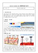 자외선과 차단제의 원리 과학주제 탐구 보고서