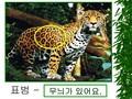 동물 특징 설명(학습 활동 자료)