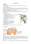 대표적인 질환별 물리치료