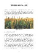경관작물 씨뿌리는 시기와 겨울철 경관겸용 녹비작물 재배