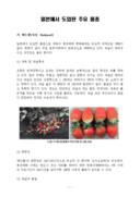 딸기 일본에서 도입된 주요 품종
