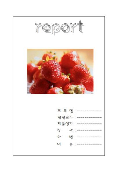 딸기그림 리포트 표지