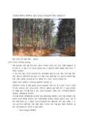 울진 금강소나무 숲길 소개