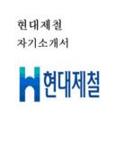 현대제철 자기소개서 예문(재무 분야)