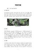 목화진딧물의 생태와 방제