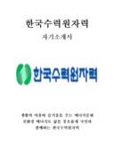 한국수력원자력 자기소개서 예문(대졸수준 인턴)