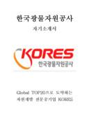 한국광물자원공사 자기소개서 예문(인턴 분야)