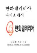 한화갤러리아 자기소개서 예문(인턴 분야)