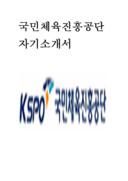 국민체육진흥공단 자기소개서 예문