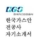 한국가스안전공사 KGS 자기소개서 예문