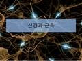 신경과 근육의 생리