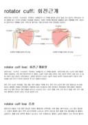 회전근개파열의 증상과 분류