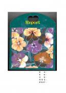 레포트표지(팬지 꽃)