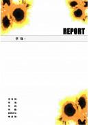 해바라기 레포트 표지(1)