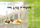 새싹 체소 농산물 마케팅전략기획서